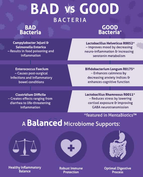 Bad vs Good Gut Bacteria - Jess Janda